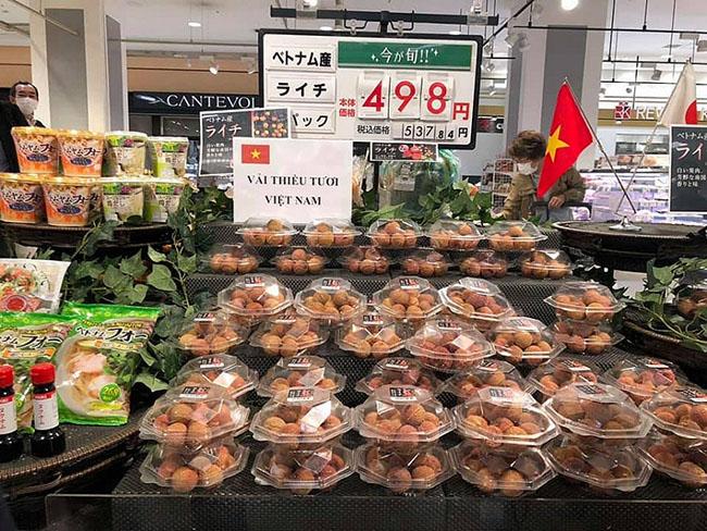 Việt Nam – Nhật Bản: Tăng cường kết nối doanh nghiệp xuất nhập khẩu nông sản