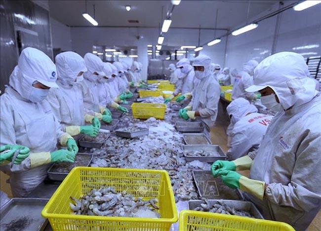 Nhu cầu thủy sản của EU hồi phục, cơ hội cho Việt Nam đẩy mạnh xuất khẩu